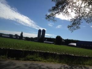 Hingham farm