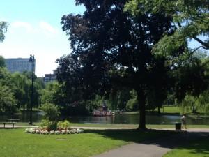 Public Gardens water