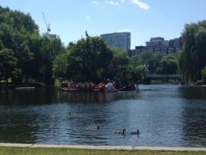 Swan boats 2