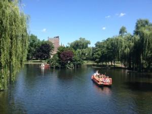 Swan boats