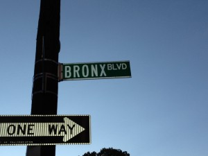 Day 3 Bronx Blvd